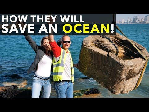 ECOncrete - technology to save ocean reefs