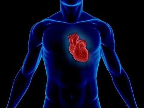 Balancing Cardio and Caloric Intake(Fat Loss)