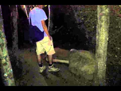 Bosnian Pyramids: Orbs in the Ravne Tunnels #9