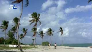 getlinkyoutube.com-Bud Spencer Terence Hill ZWEI ASSE TRUMPFEN AUF HD