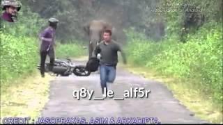getlinkyoutube.com-اركض اخويا عامر ولك اركض