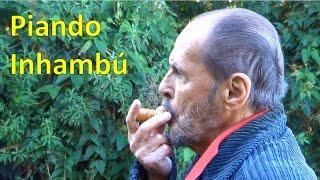 getlinkyoutube.com-Piando Inhambú