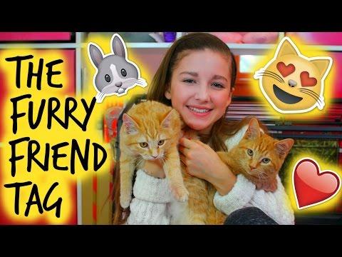 Furry Friends Tag