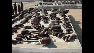 Escursione nel deserto di El Alamein