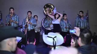 getlinkyoutube.com-El Huizache  Los  pajaritos  de  Tacupa  Michoacan.wmv