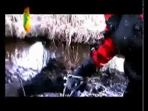 Valma ATV Action