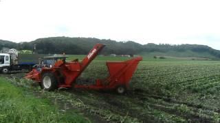2011.08.21 トウモロコシ収穫.MOV