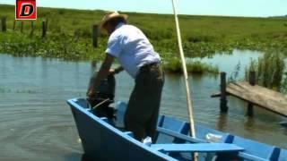 getlinkyoutube.com-pesca pirañas