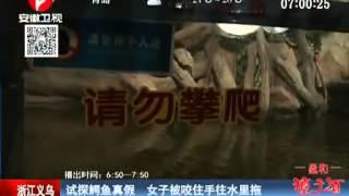 getlinkyoutube.com-惊险瞬间:女子被鳄鱼咬住手往水里拖