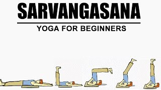 getlinkyoutube.com-Sarvangasana | Yoga For Beginners