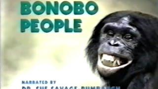 getlinkyoutube.com-Bonobo People (Part 1 of 4)