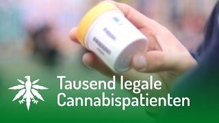 getlinkyoutube.com-Tausend legale Cannabispatienten | DHV News #106