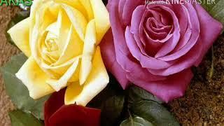 DJ Upar Wala Apne Saath Hai((((HD Video Song