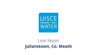 Video Thumbnail: #FixingLeaks | Julianstown, Co Meath