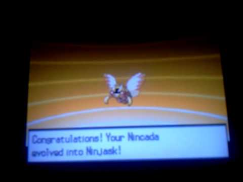 Pokemon White/Black How to get Shedinja!