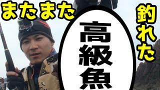 getlinkyoutube.com-ショアジギングで高級魚GET!in長崎平戸