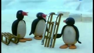 getlinkyoutube.com-Pingu 11/130