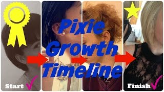 getlinkyoutube.com-Pixie Growth Timeline