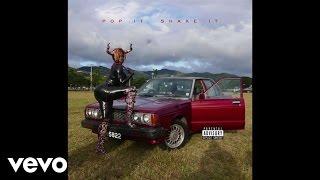 YG - Pop It, Shake It (Audio) ft. DJ Mustard width=