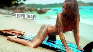 Best of Trap Music 2015 Hip Hop Session Mix