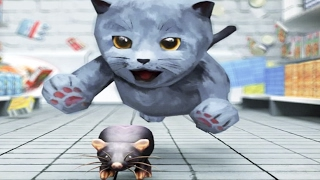 getlinkyoutube.com-My Cute Little Kitty   3D Cat Simulator Little Kitten Pet Care Gameplay Video