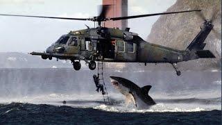 getlinkyoutube.com-Real or Fake? Shark Attacks Helicopter