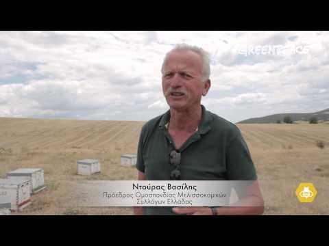 Νεονικοτινοειδή φυτοφάρμακα: συνέπειες στην ελληνική μελισσοκομία