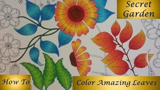 getlinkyoutube.com-How To : Color Amazing Leaves | Secret Garden Coloring Book