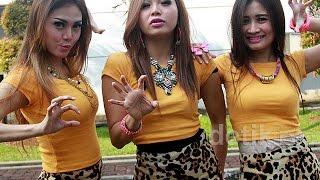 Sakit Hati  - Trio Macan  karaoke dangdut ( tanpa vokal ) cover #adisTM