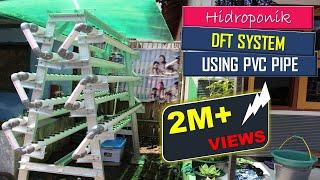 getlinkyoutube.com-cara bertanam hidroponik sederhana di rumah dengan sistem DFT