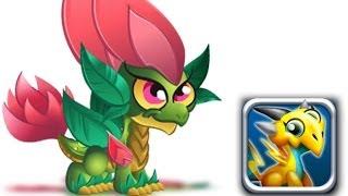 getlinkyoutube.com-How to Get Double Nature Dragon 100% Real! Dragon City Mobile!