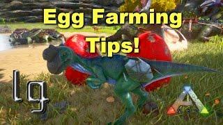 getlinkyoutube.com-ARK: Survival Evolved - Egg Farming, Featuring Oviraptor Boost!