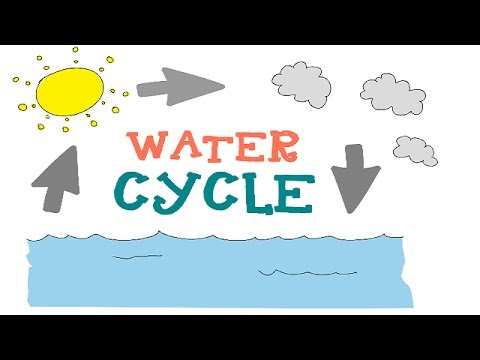 The water cycle for kids : funza Academy Science Videos