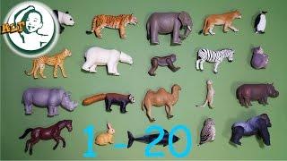 getlinkyoutube.com-Learn to count to 20 with Tomy zoo animal 2015