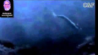 getlinkyoutube.com-Real mermaid found incredible footage
