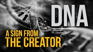 DNA Intelligent Design by The Creator