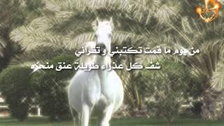 شيلة بنت الفخر كلمات الشاعر/ عبدالرحمن بن جزا أداء المنشد رائد الغضباني