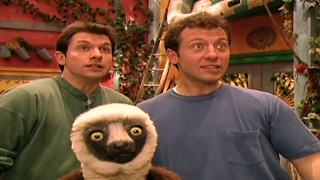 Zoboomafoo 101 - The Nose Knows | HD | Full Episode