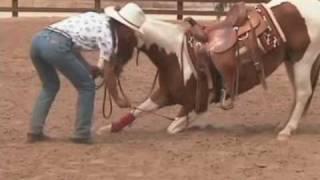 getlinkyoutube.com-Teach Your Horse To Bow