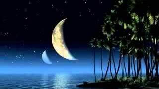 getlinkyoutube.com-Best Quran Recitation :  Surah Al Lail - By Yousuf Kalo