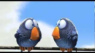 getlinkyoutube.com-Веселый мульт с приколами о глупых птичках на проводе