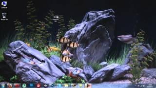 HD DreamScene on Windows 7 (Aquarium)
