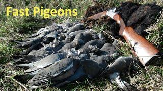 getlinkyoutube.com-Shooting Fast Pigeons