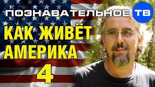 getlinkyoutube.com-Как живёт Америка 4 (Познавательное ТВ, Максим Кузнецов)