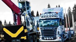 Timber Trucking Sweden Part 2