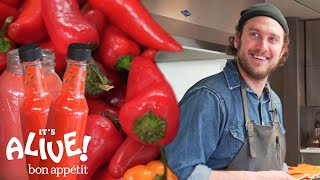 Brad Makes Fermented Hot Sauce | It's Alive | Bon Appétit width=