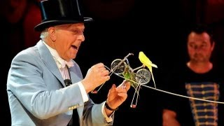 getlinkyoutube.com-Norman Barrett MBE and his amazing budgies: Zippos Circus