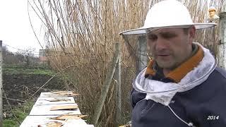 getlinkyoutube.com-albinele în Martie ,hranire cu sirop 2014