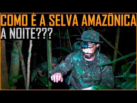 Selva Amazônica a Noite (1o BIS de Manaus)