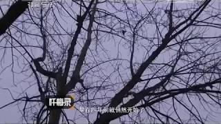 getlinkyoutube.com-20150419 忏悔录  复仇欲谋